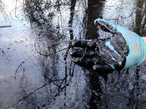 AR Oil Spill 2